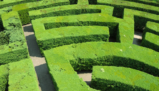househunting maze
