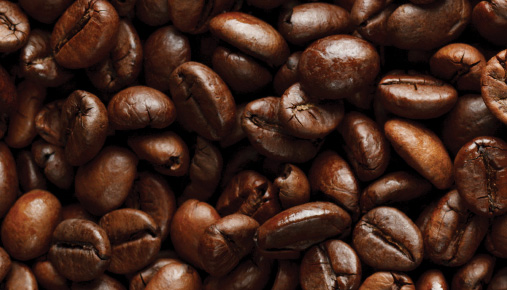High-End Technology Brews Café-Caliber Coffee at Home