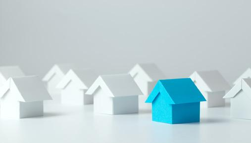 Blue house: Budget retirement planning considerations