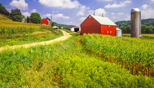 Getting invested: Farmland REITs