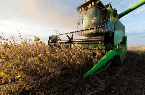 Reaping What You Sow: Tax Loss Harvesting