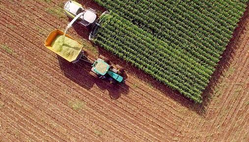Overhead view of farm tractor harvesting corn