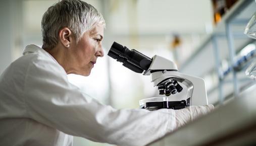 Microscope: Earnings season, trading, calendar tools
