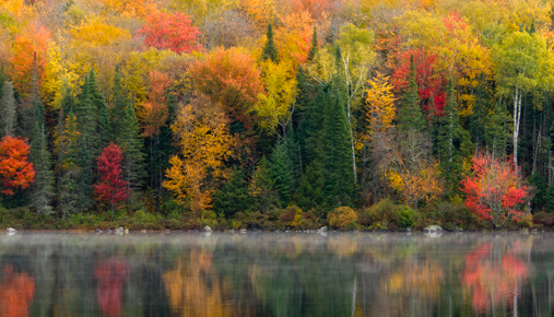 Lower gas prices, fall foliage tours