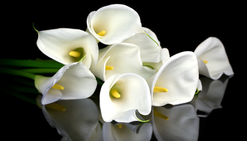 Funeral flowers: Financial advice for the recently widowed