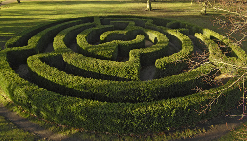 Navigate the Social Security labyrinth