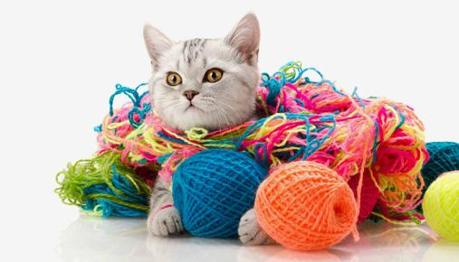 Cat in yarn: Traders can tie off loose ends--tax considerations--before year's end